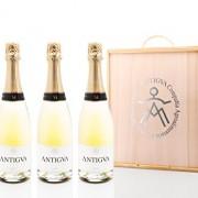 ANTIGVA-Millsim-FER-Champagne-pack-3-Unitats-0