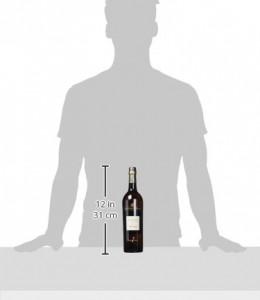 To-Pepe-Jerez-vino-fino-0