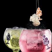 Infugintonic-Estuche-Degustacin-Infusiones-para-Ginebra-Ron-y-Vodka-10-Unidades-0-2