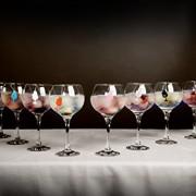 Infugintonic-Kit-Deluxe-Moyen-Thés-pour-Gin-Rhum et de la Vodka-30-unités-0-1